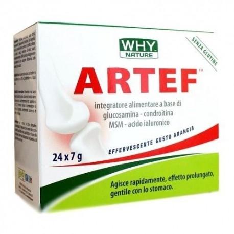Glucosamina, Condroitina, MSM WHY Nature, Artef, 24 bustine