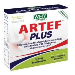 Glucosamina, Condroitina, MSM WHY Nature, Artef Plus, 14 pz