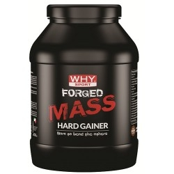 Gainers WHY Sport, Forged Mass, 1000 g