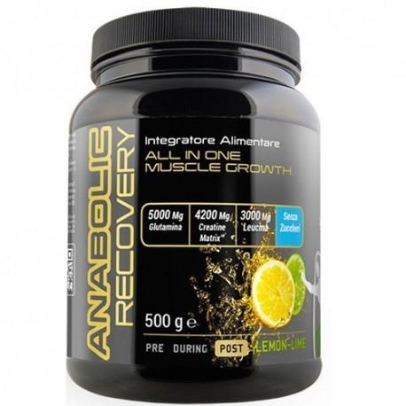 Post Workout Net Integratori, Anabolic Recovery, 500 g.