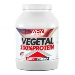 Proteine Vegetali WHY Sport, Vegetal 100% Protein, 750 g
