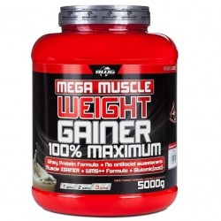 Gainers BWG, Mega Muscle Weight Gainer, 5000 g