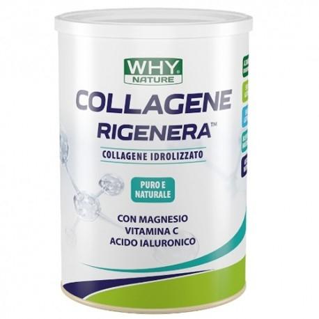 Collagene WHY Nature, Collagene Rigenera, 330 g
