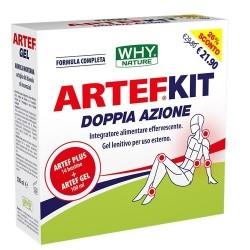 Glucosamina, Condroitina, MSM WHY Nature, Artef Kit