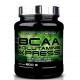 Aminoacidi Ramificati (Bcaa) Scitec Nutrition, Bcaa+Glutammina Xpress, 600g (Sc.08/2020)