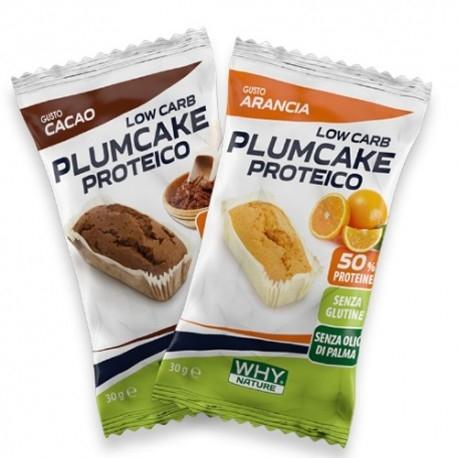 Pasti e Snack Why Nature, Plum Cake Proteico, 30 g