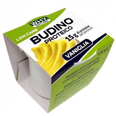 Budini Why Nature, Budino Proteico, 125 g