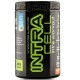 Intra Workout Net Integratori, Intra Cell, 440 g