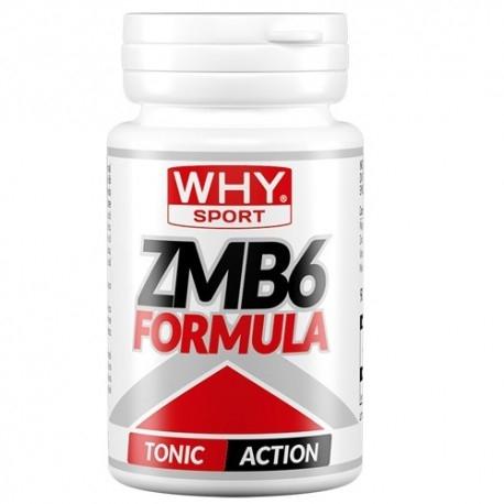 Zinco e Magnesio Why Sport, ZMB 6 formula, 90 cpr