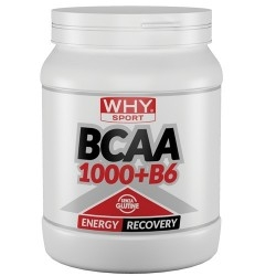 Aminoacidi Ramificati (Bcaa) WHY Sport, Bcaa 1000 + B6, 600 cpr